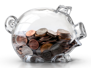 capacity-building-services-piggy-bank