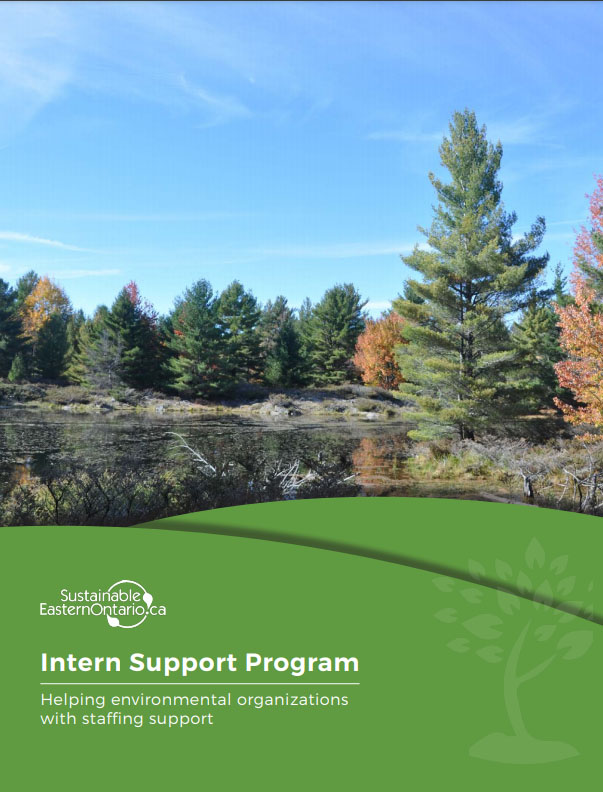 """Cover of a document called """"Intern Support Program"""" featuring a fall landscape and white text on green."""